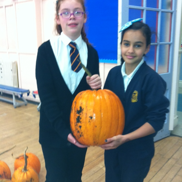 Look at one of our pumpkins after we had harvested it from the allotment.   We grew 9 very largehealthy pumpkins.